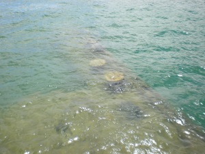 A portion of the USS Arizona barely visible beneath the surface of the water.